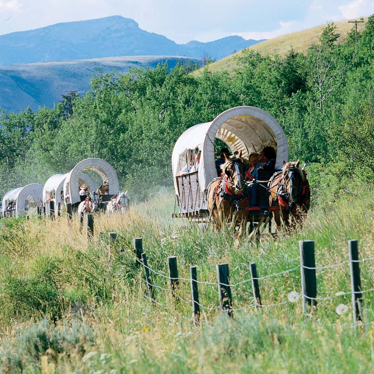 Bar T 5 Covered Wagon Cookout Jackson Hole Traveler