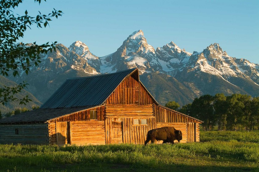 Best places to photograph in grand teton national park for Best places to eat in jackson wy