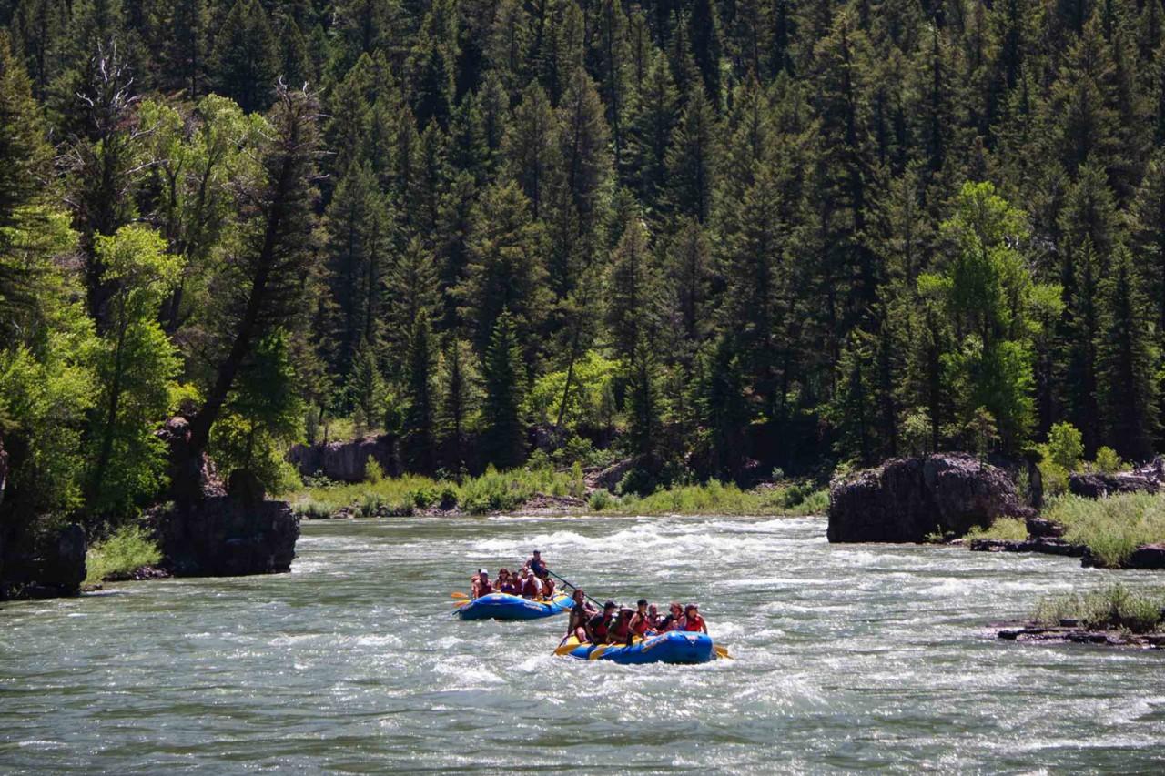 Introducing The Snake River Jackson Hole Traveler