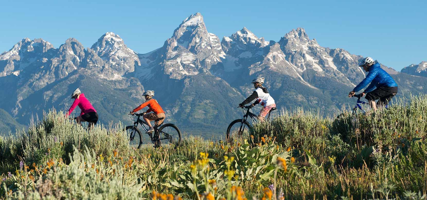 Jackson Hole Biking & Pathways