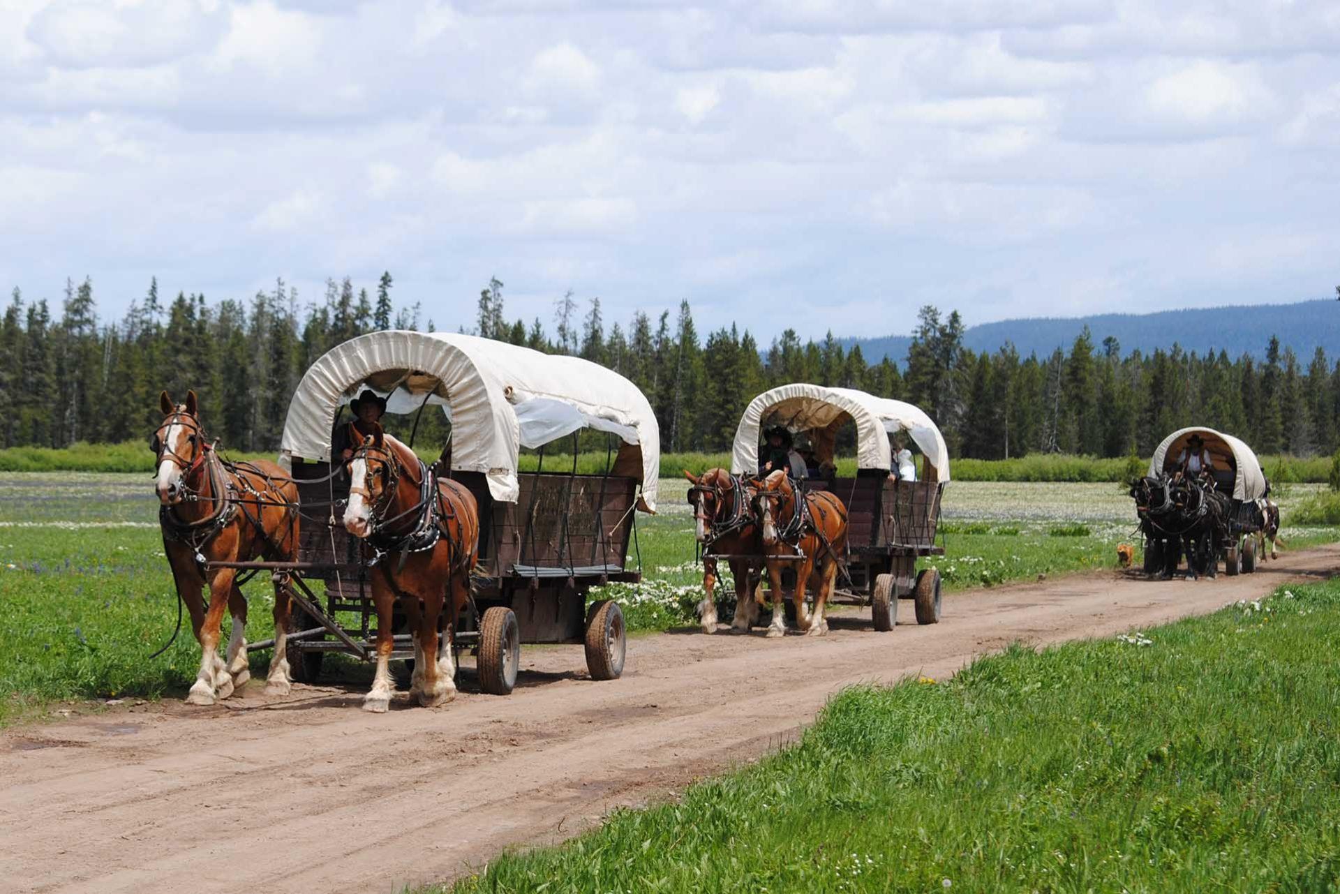 Teton Wagon Train Jackson Hole Traveler